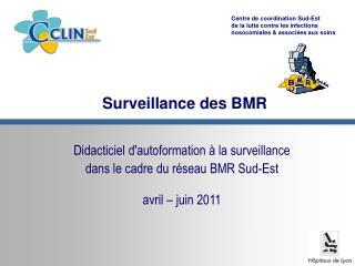 Surveillance des BMR