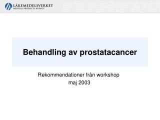 Rekommendationer fr n workshop maj 2003
