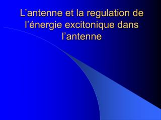 L antenne et la regulation de l  nergie excitonique dans l antenne
