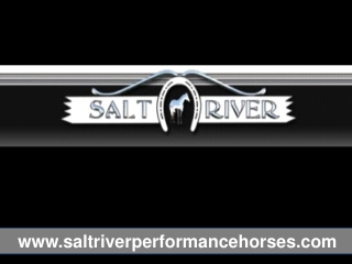 Saltriver Performance Horses Training Facilities