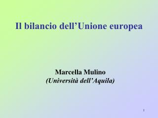 Il bilancio dell Unione europea