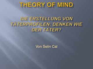 Theory of mind  Die erstellung von t terprofilen: denken wie  der t ter