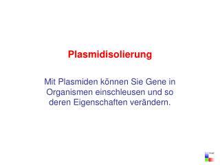 Plasmidisolierung