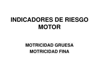 INDICADORES DE RIESGO MOTOR