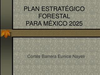 PLAN ESTRAT GICO FORESTAL  PARA M XICO 2025