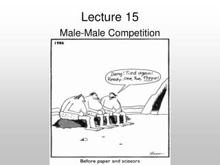 Lecture 15 Male-Male Competition