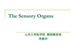 The Sensory Organs