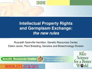 Intellectual Property Rights  and Germplasm Exchange: the new rules