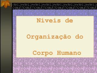 N veis de   Organiza  o do   Corpo Humano