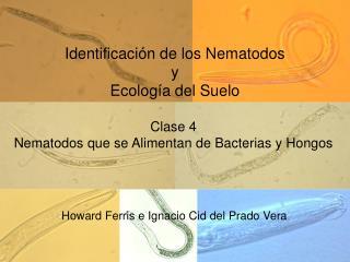 Identificaci n de los Nematodos y Ecolog a del Suelo