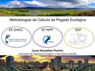 Lucas Gon alves Pereira Laborat rio de Engenharia Ecol gica  e Inform tica Aplicada