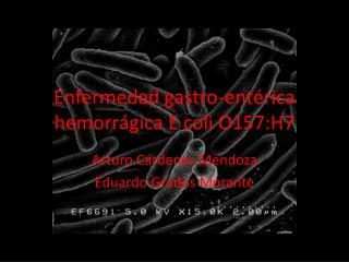 Enfermedad gastro-ent rica hemorr gica E coli O157:H7