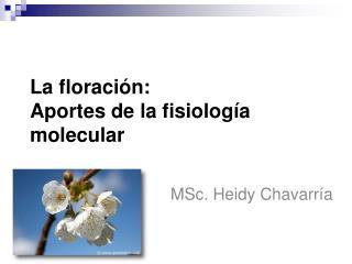 La floraci n: Aportes de la fisiolog a molecular