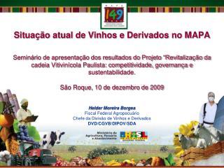Situa  o atual de Vinhos e Derivados no MAPA  Semin rio de apresenta  o dos resultados do Projeto  Revitaliza  o da cade
