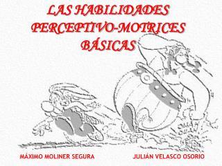 LAS HABILIDADES PERCEPTIVO-MOTRICES B SICAS