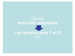 Cours 3 Immunit  adaptative  Les lymphocytes T et B FF
