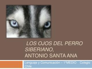 Los ojos del perro siberiano,  antonio santa ana