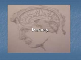 Memory  A cognitive process Process of encoding, storage and retrieval  Theories of Memory Theory of general memory func