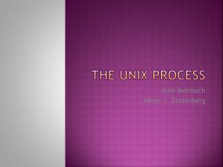 The UNIX process