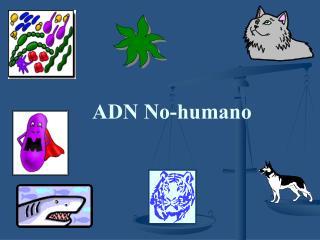 ADN No-humano