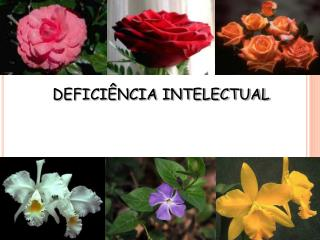 DEFICI NCIA INTELECTUAL