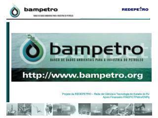 Projeto da REDEPETRO   Rede de Ci ncia e Tecnologia do Estado do RJ Apoio Financeiro FINEP