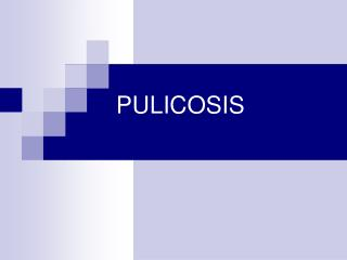 PULICOSIS