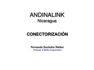 ANDINALINK Nicaragua
