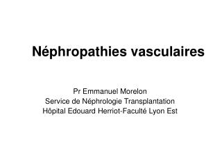 N phropathies vasculaires
