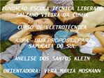 FUNDA  O ESCOLA T CNICA LIBERATO SALZANO VIEIRA DA CUNHA  CURSO DE ELETROT CNICA  ASPA   UMA PROPOSTA PARA SAPUCAIA DO S