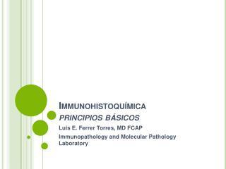 Immunohistoqu mica principios b sicos