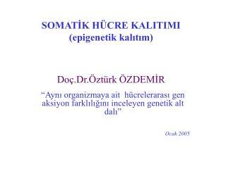 SOMATIK H CRE KALITIMI epigenetik kalitim   Do .Dr. zt rk  ZDEMIR