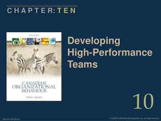 Developing High-Performance Teams