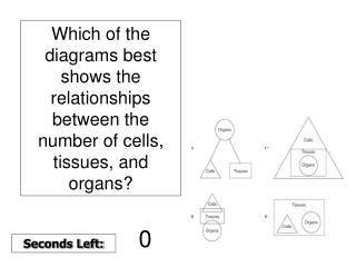 Cells are the basic building blocks of all life. Choice C is the correct answer because cells
