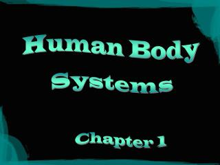 Human Body System Introduction PowerPoint