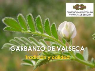 GARBANZO DE VALSECA