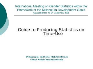 International Meeting on Gender Statistics within the Framework of the Millennium Development Goals  Aguascalientes, 19-