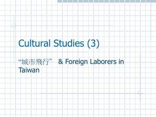 Cultural Studies 3