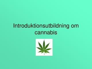 Introduktionsutbildning om cannabis