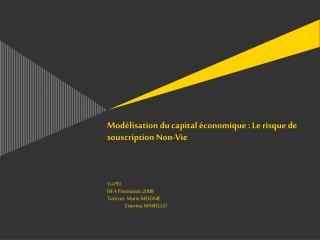 Mod lisation du capital  conomique : Le risque de souscription Non-Vie