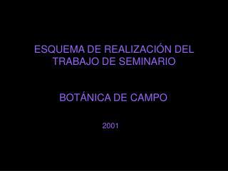 ESQUEMA DE REALIZACI N DEL TRABAJO DE SEMINARIO