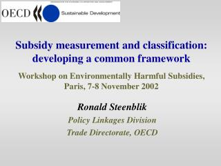 Subsidy measurement and classification: developing a common framework  Workshop on Environmentally Harmful Subsidies, Pa