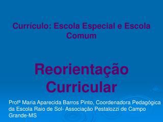 Curr culo: Escola Especial e Escola Comum   Reorienta  o Curricular