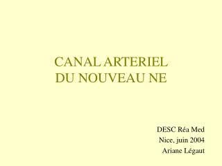 CANAL ARTERIEL  DU NOUVEAU NE