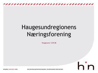 Haugesundregionens N ringsforening