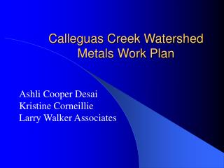 Calleguas Creek Watershed Metals Work Plan