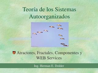 Teor a de los Sistemas Autoorganizados