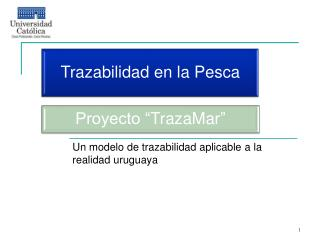 Un modelo de trazabilidad aplicable a la realidad uruguaya