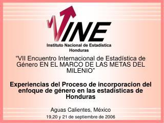 VII Encuentro Internacional de Estad stica de G nero EN EL MARCO DE LAS METAS DEL MILENIO   Experiencias del Proceso de