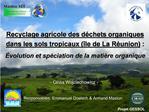 Recyclage agricole des d chets organiques dans les sols tropicaux  le de La R union :   volution et sp ciation de la mat